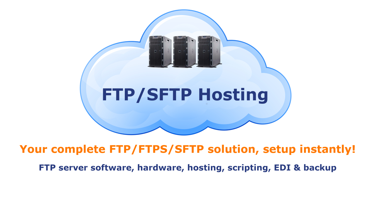 DriveHQ Cloud FTP Server Hosting Service