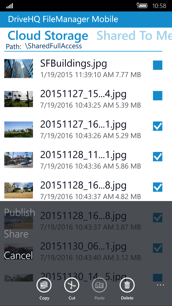 DriveHQ FileManager for Windows Mobile Phone screenshot: share, publish and access files/folders with granular access control.